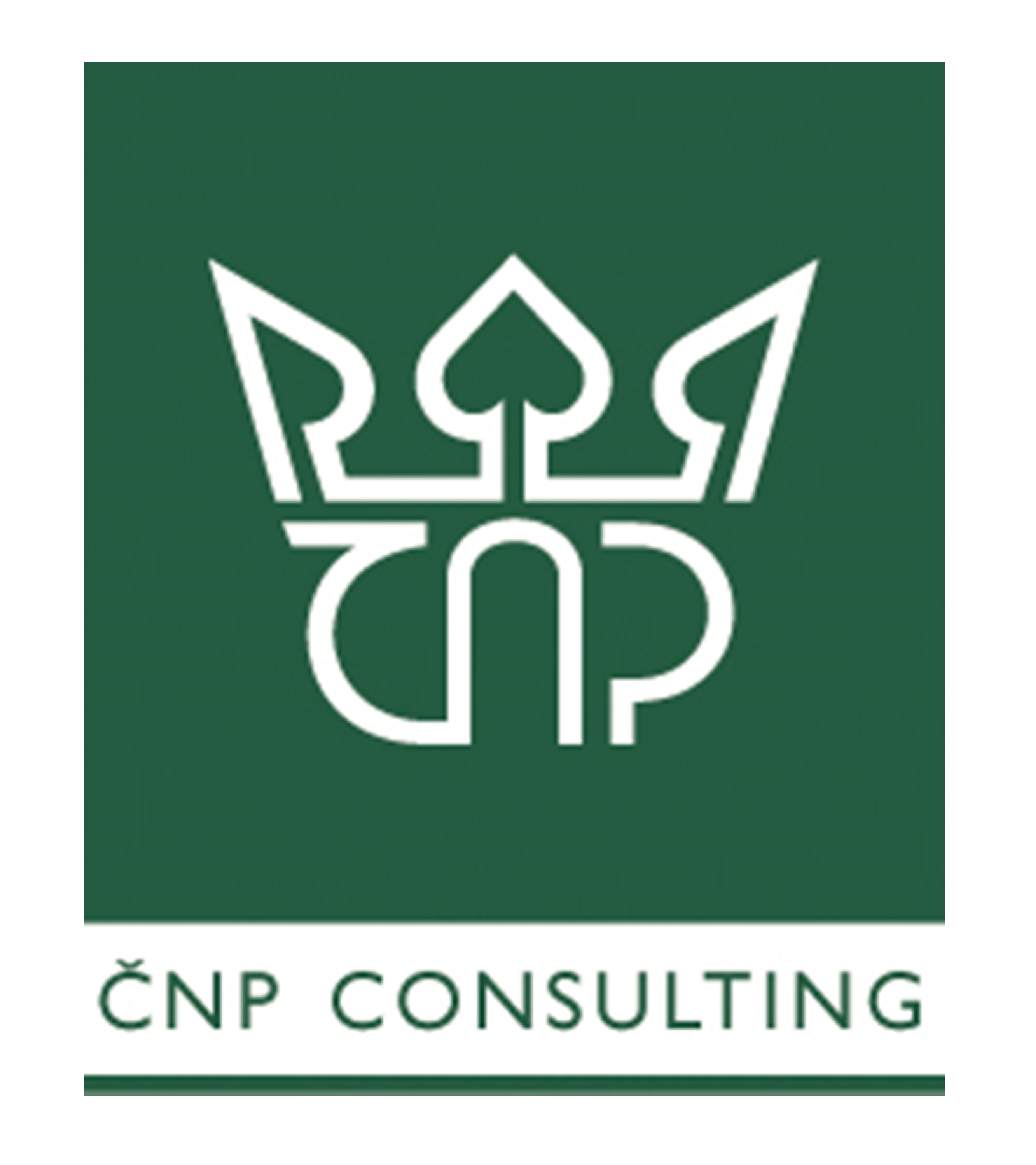 ČNP CONSULTING